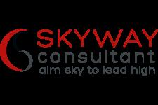 skywayconsultant_logo